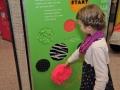 Ausstellung ECHT KLASSE! Ab Klassenstufe 1 - 4: Foto