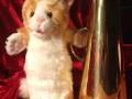Hilfe holen ist kein Petzen: Katze Kim mit Megafon (c Petze 2017, Foto: Sandra Strobler)